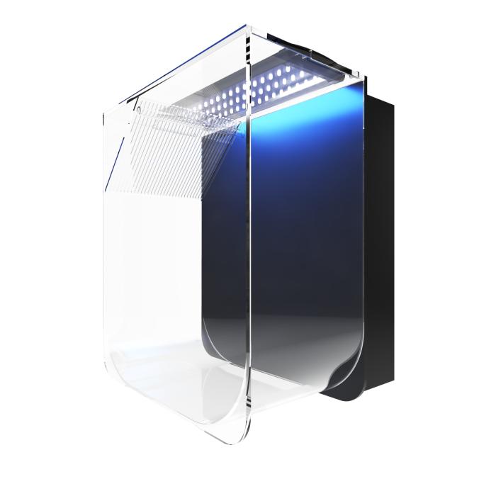 Jellyfish tank with light