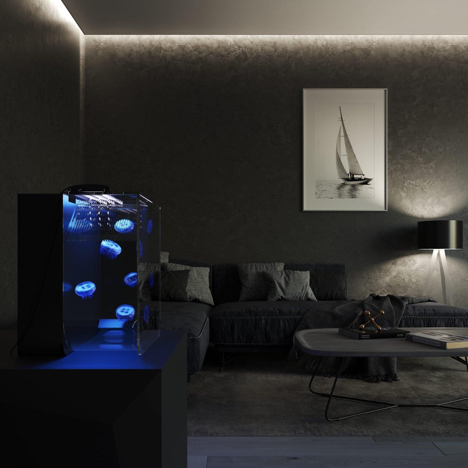Medusa Mini Jellyfish tank in dark room scene